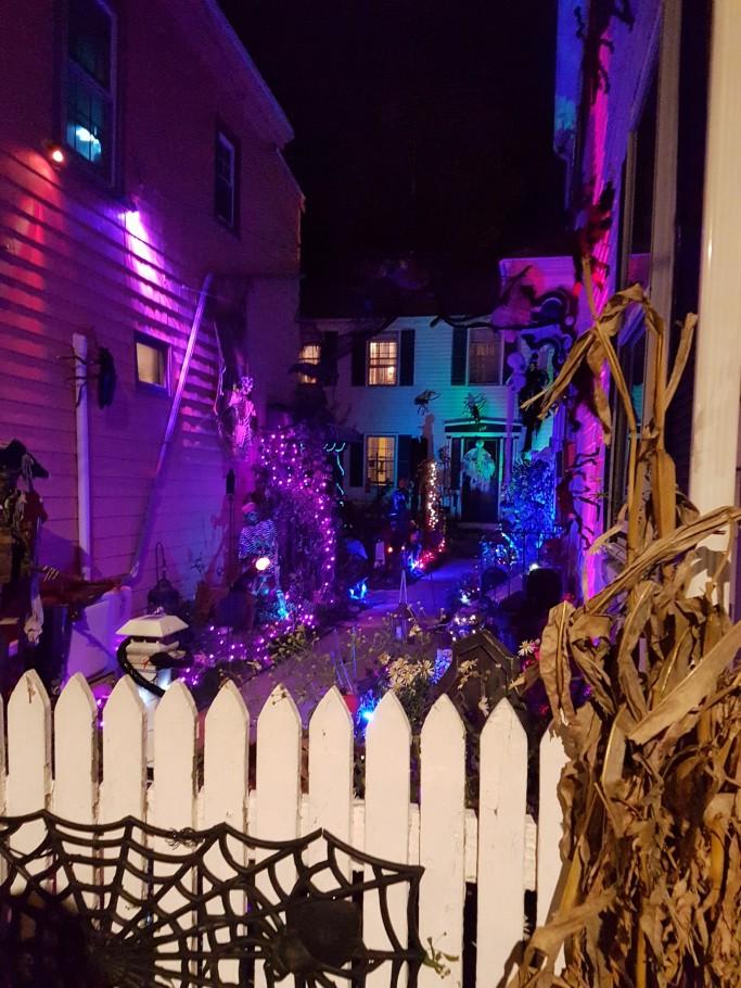 Halloween - derby st house